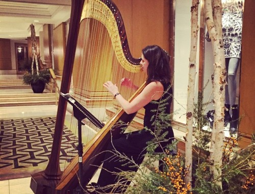 Harp at Rittenhouse Hotel