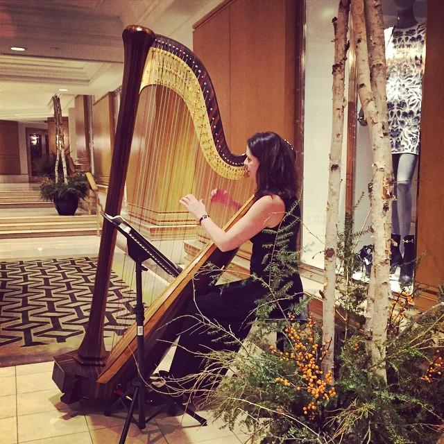 A Little Harp Music