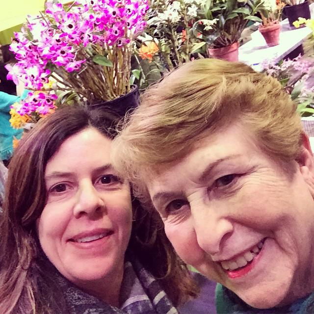 #flowershow #orchids